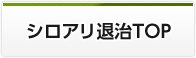 シロアリ退治TOP